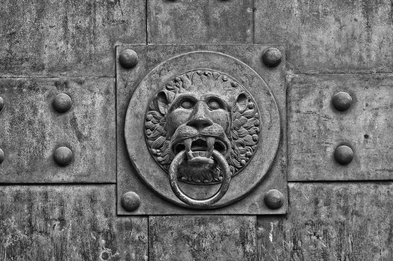 Porte d'Entrée Blindée à Vienne pour maison